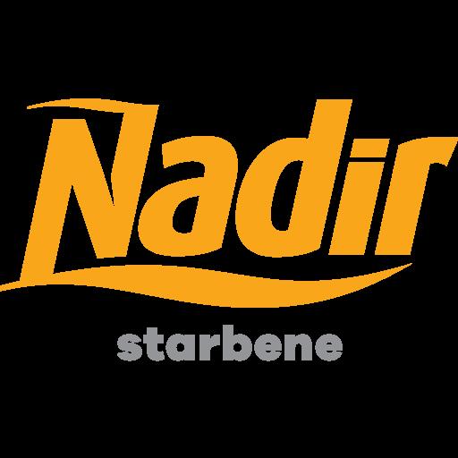 Logo-Nadir-ICONA